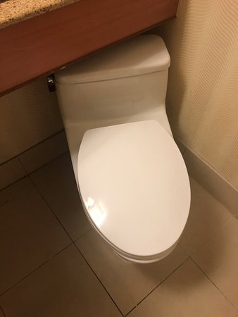 toilet nested below a countertop in such a fashion that the seat and lid would not even stay up!!!