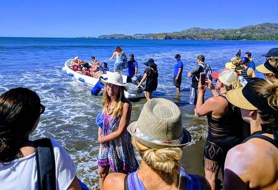 f0345d684 Going out to the Catamaran for snorkeling. - Picture of Costa Rica ...