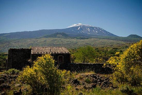 Gita di una giornata sul Monte Etna