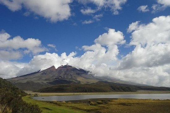 Cotopaxi Volcano Excursion from Quito