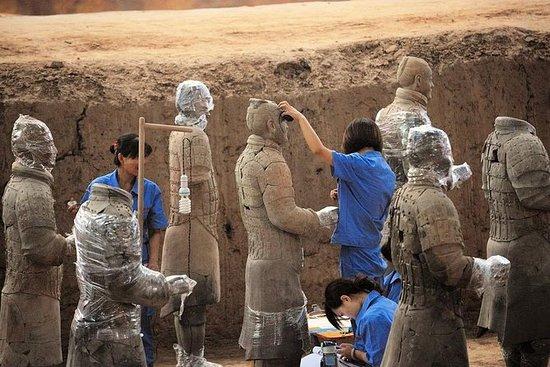Excursión privada de un día a Xian...