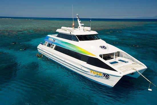 从凯恩斯出发的大堡礁生态浮潜和潜水游船,包括午餐