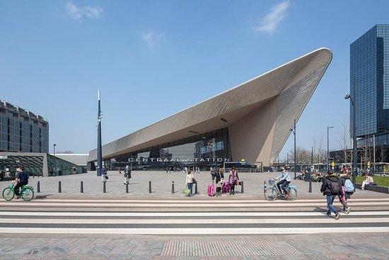 鹿特丹文化徒步之旅