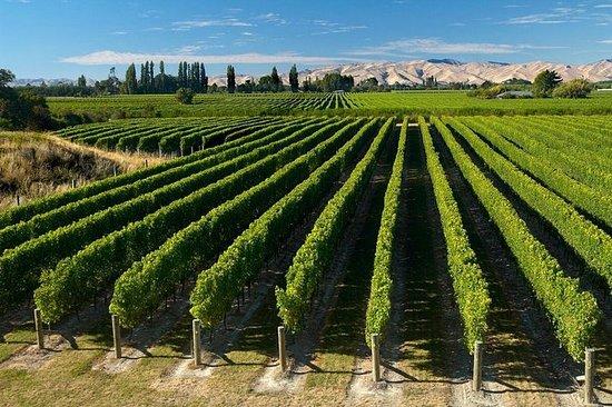 Half-Day Marlborough Wine Region Tour...