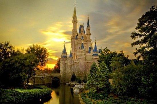 迪士尼乐园或迪士尼乐园1日护照门票和东京私人接送服务