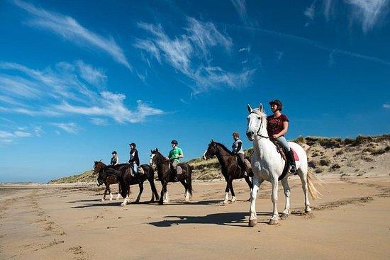 从戈尔韦全天出发的Wild Atlantic Way海滩骑马游览