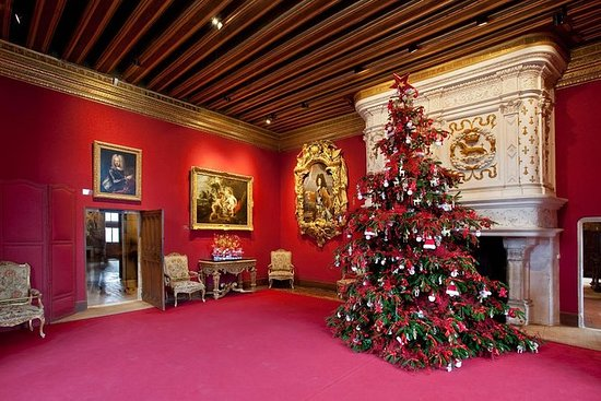 来自图尔镇的圣诞节私人全日卢瓦尔河谷城堡