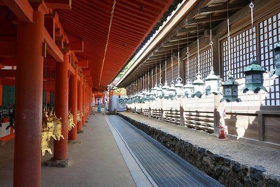 私人旅游:奈良拍摄和摄影指南观光