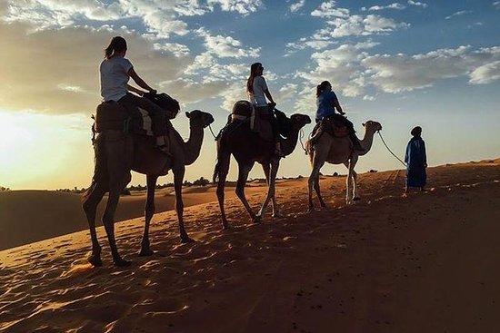3天马拉喀什沙漠之旅通过Ouarzazat和Dades峡谷前往Merzoug...