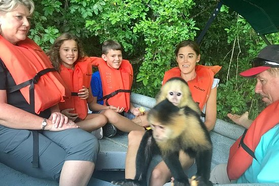 Private Monkey Island Boat Tour at...