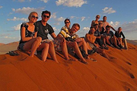 开普敦为期19天的沙漠追踪者陆上游览