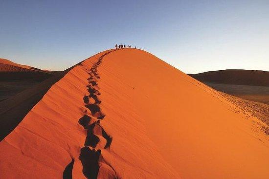 Excursion de 35 jours entre Cape Town...