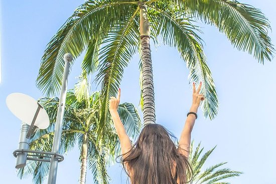 Private 3-Day Los Angeles Tour: Downtown LA, Hollywood and Santa Monica: Private 3-day Tour of Los Angeles: Downtown LA, Hollywood and Santa Monica