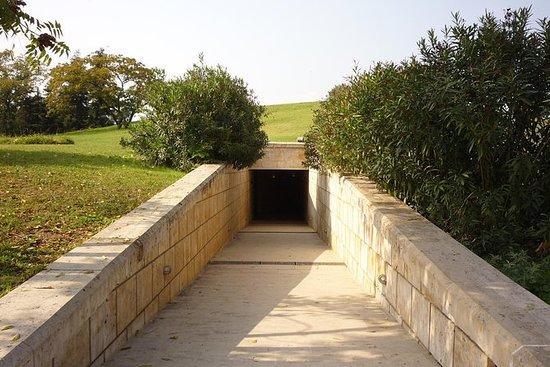 Vergina Royal Tombs Halvdag...
