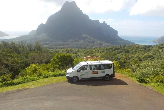 Private Tour of Moorea med...