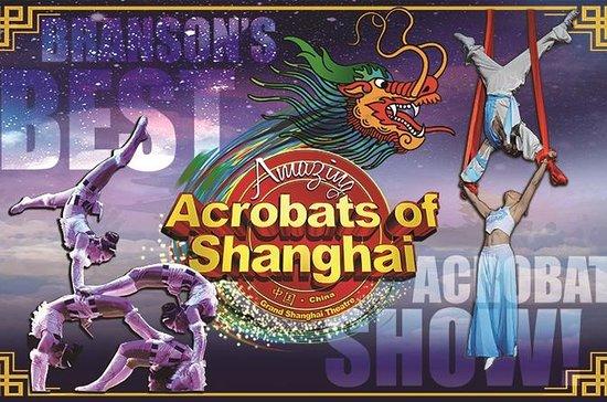上海の素晴らしいアクロバット