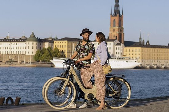 Stockholm E-Bike Tour med GPS - 5...