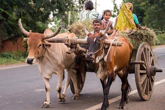10 DAGER PRIVATE TOUR OF DELHI - AGRA...