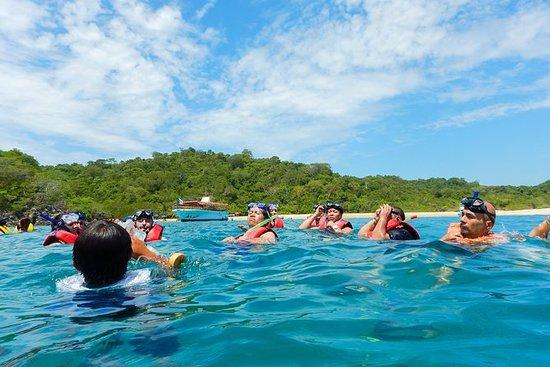 Experiencia Speedy Snorkel