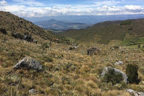 不受限制的赛道:参观Mongui并在PáramodeOcetá徒步旅行