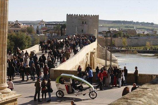 Visita guiada em torno de Córdoba por...