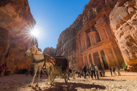 One Day Petra ex Cruise