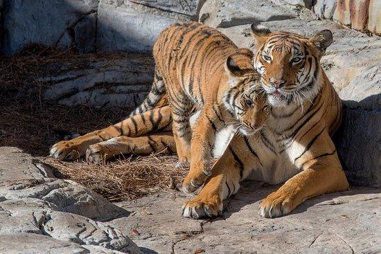 Tampa's ZooQuarium Admission Ticket