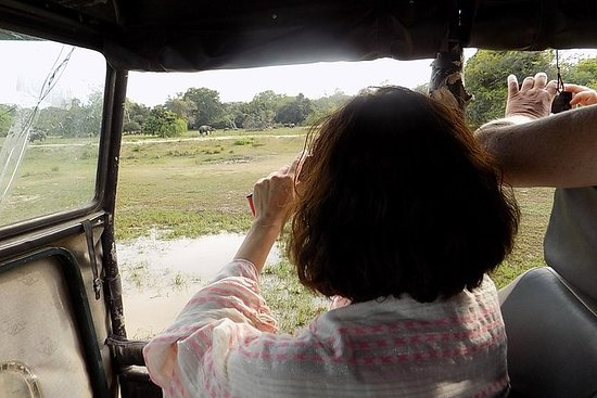 Kumana National Park Wildlife Safari