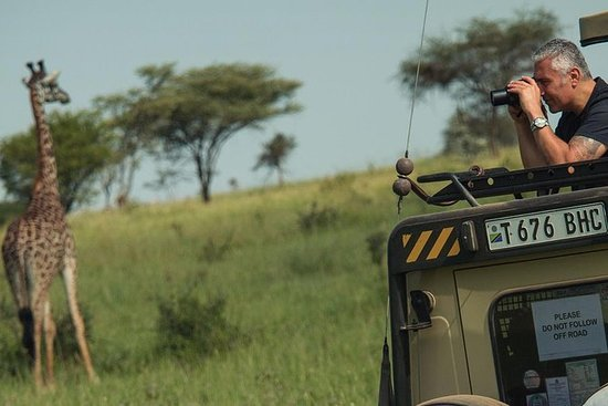 Safari privé 'Serengeti-Ngorongoro...