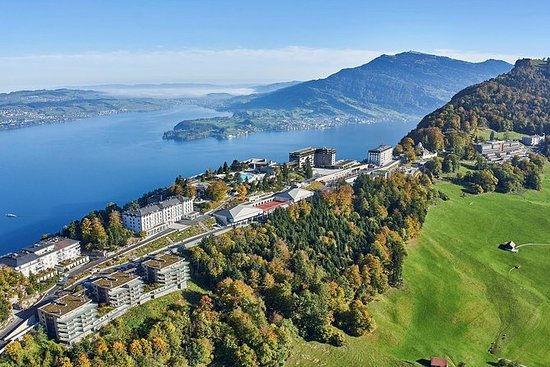 Lucerne and Bürgenstock Day Trip from...