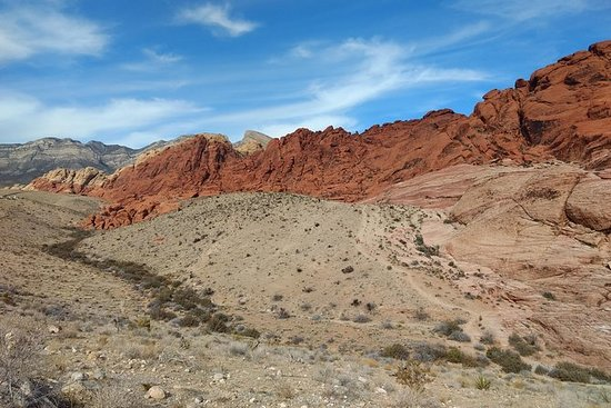 Red Rock Canyon Half-Day Photo Tour...
