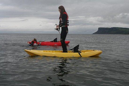 Tour guiado en kayak de 1 hora