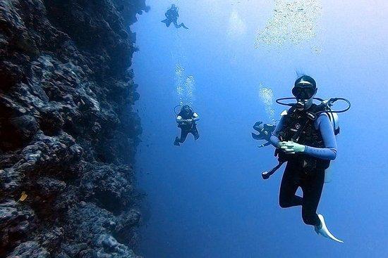 3 Day Scuba Dive Experience Vava'u