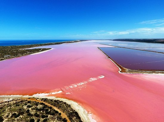 Pink Lake Aerial Flyover from...