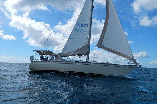 Half Day Sailing & Snorkeling...