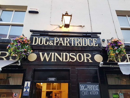 Dog and Partridge