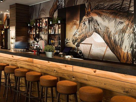 the niu Saddle: Bar