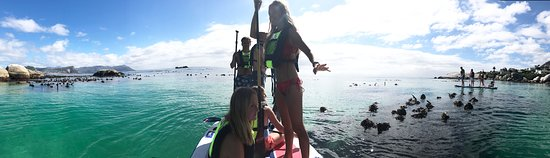 The Seaforth SUP Experience ✨ Paddle to the penguins with Xpression On The Beach. Guided trips and professional instruction. 🐧 Come and see penguins, seals and bird life up close and personal. No experience is needed - all ages are welcome! Call us on 021-7090596 to book a tour group with your family and friends