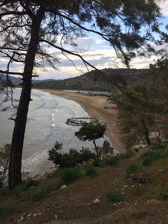 Iztuzu Beach: İztuzu'nda kış😍😍