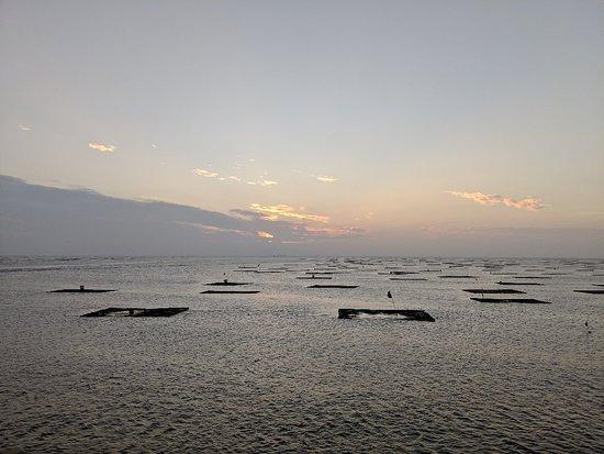 Sunset Platform