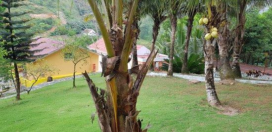 Landscape - Picture of Hotel Colinas Bethel, Dominican Republic - Tripadvisor