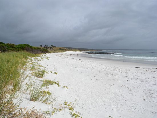 Binalong Bay, Australien: Baia dei fuochi: la spiaggia