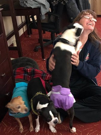 Mineral Wells, WV: Chantell, Director of housekeeping packed and carried items from hot breakfast bar for us, then played with my dogs.  Very friendly and accommodating staff!