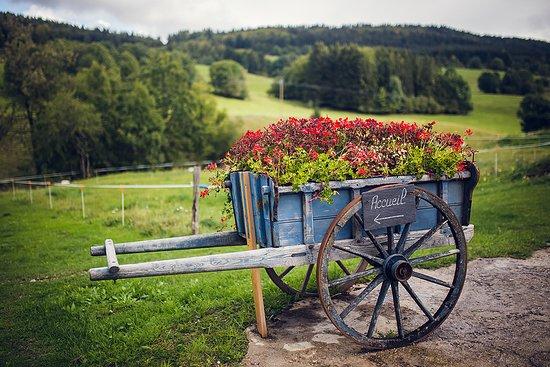 Les Bouchoux, France: Espaces extérieurs avec salon de jardin, en pleine nature du Haut-Jura, proche des circuits de rando GTJ, GR9, Grand 8 Cheval, ...