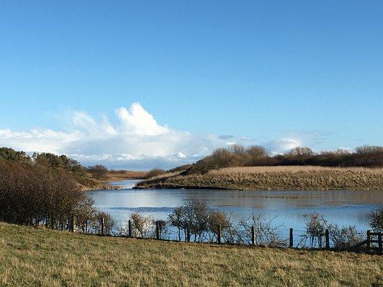 Hauxley Wildlife Discovery Centre - Northumberland Wildlife Trust