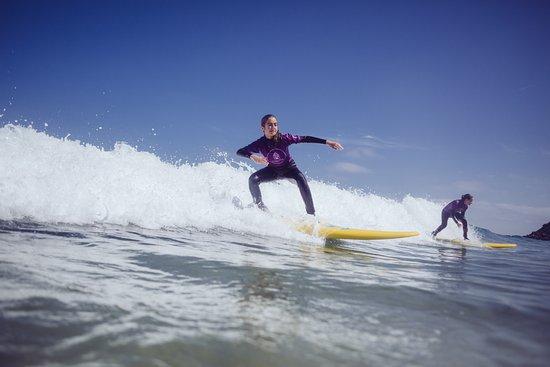 Shelter Surf