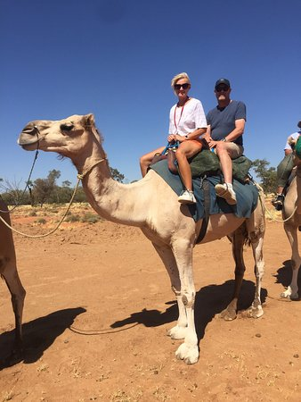 d0b607e2f73a Pyndan Camel Tracks (Alice Springs)  UPDATED 2019 All You Need to ...