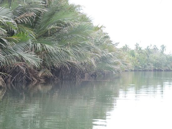 Cortes, Filippinene: nature pur