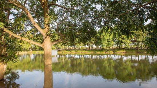 Landscape - Picture of Amarak Farm, Phnom Penh - Tripadvisor