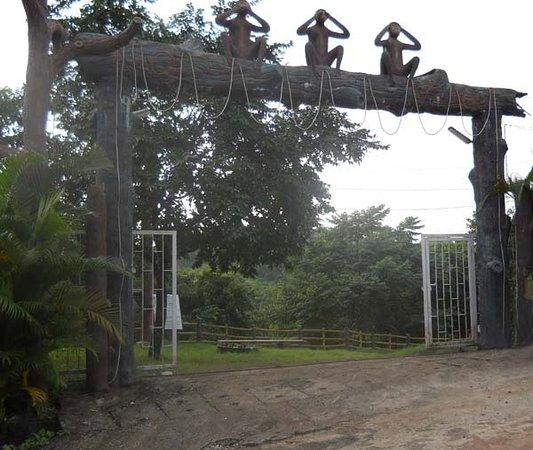 Nagesh Gardens, Goa: Nagesh Village, Goa